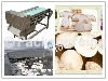 Mushroom Slicing Machine-Whirlston Food Processing Machine